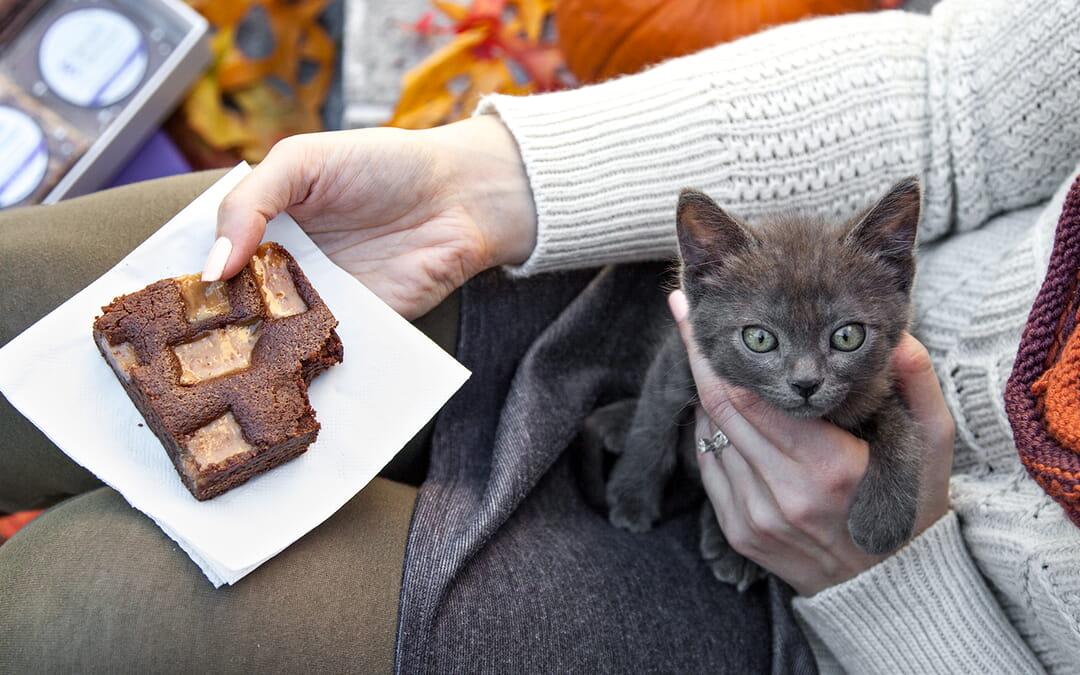 4 Easy Halloween Treats to Keep Things Sweet